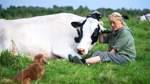 Kuhaltersheim auf Butjadingen: So geht der Traum von glücklichen Kühen
